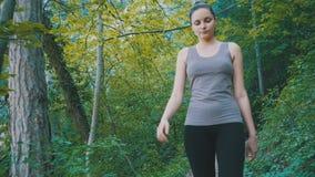 步行在山的森林足迹道路的旅客妇女 岩石走 影视素材