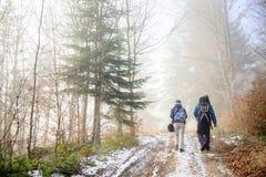 步行在有雾的森林山行迹的男人和妇女背包徒步旅行者 库存图片