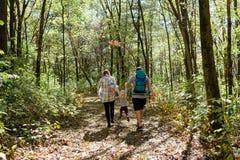 步行在森林的年轻家庭 免版税库存图片