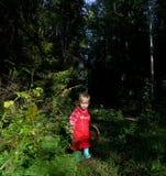 步行在森林里的可爱的小女孩在夏日 免版税库存图片