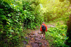步行在沿考艾岛海岛的Na梵语海岸的著名Kalalau足迹的年轻男性游人  库存图片