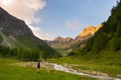 步行在田园诗风景的背包徒步旅行者 夏天冒险和探险在阿尔卑斯 流经开花的草甸的小河和 免版税库存图片