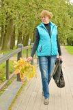 步行在秋天公园 免版税库存照片