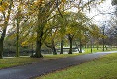 步行在秋天通过病区公园在曼格唐郡在北爱尔兰 免版税库存图片