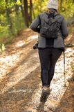 步行在道路的妇女在森林 免版税库存照片