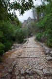 步行在马略卡 图库摄影