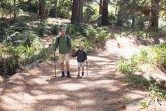 步行在晴天的父亲和儿子在森林里 库存照片