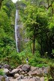 步行对在Pipiwai足迹的头的著名Waimoku秋天的年轻女性游人,在路的七个神圣的水池上 库存图片