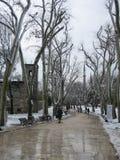 步行方式在伊斯坦布尔,土耳其在冬天 免版税图库摄影