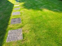 步行方式块在绿草的在公园 免版税库存照片