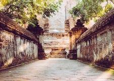 步行方式或输入对老教堂和塔有红砖墙壁的 库存照片
