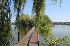 步行桥到在湖中间的一个绿色海岛 库存图片