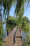 步行桥到在湖1中间的一个绿色海岛 免版税库存照片