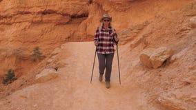 步行沿在峡谷的供徒步旅行的小道的成人白种人妇女 股票视频