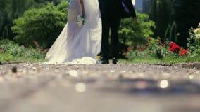步行沿着向下公园和握他们的手的一对美好的已婚夫妇 金黄闪烁的五彩纸屑在转动 股票录像