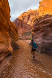 步行沿着向下土狼谷女孩远足者背包徒步旅行者在水中, 免版税图库摄影