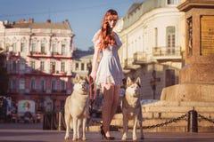 步行沿着向下有两条狗的街道的女孩 库存图片