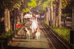 步行沿着向下有两条狗的街道的女孩 图库摄影