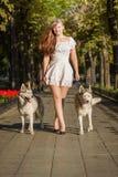 步行沿着向下有两条狗的街道的女孩 免版税库存照片