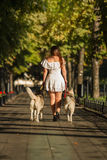步行沿着向下有两条狗的街道的女孩 免版税库存图片