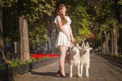 步行沿着向下有两条狗的街道的女孩 库存照片
