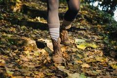 步行沿着向下森林地的少妇的腿倾斜 免版税库存照片