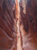 步行沿着向下狭窄的峡谷的人 库存图片