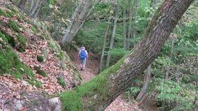 步行沿Dortebachtal谷的远足者在Mosel谷德国 与供徒步旅行的小道的德国自然保留命名Eifelsteig 影视素材