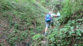 步行沿Dortebachtal谷的远足者在Mosel谷德国 与供徒步旅行的小道的德国自然保留命名Eifelsteig 股票视频