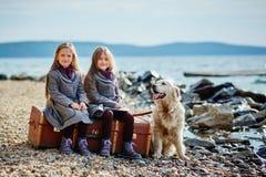 步行的两个小双姐妹与在海滩的狗 库存图片