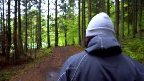 步行的人本质上 走在有帽子的山深森林男孩走在森林的 跟踪射击的常平架头 徒步旅行者 股票录像