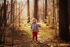 步行的女孩在森林里 免版税图库摄影