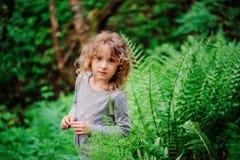 步行的逗人喜爱的儿童女孩在有蕨的夏天森林 库存照片
