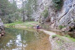 步行者在湖反射与树 库存照片