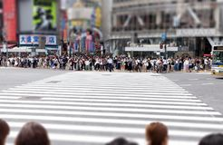 步行者等待在涩谷横穿,东京,日本 库存图片