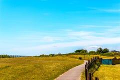 步行胡同在一个城市公园在海边镇,绿色vegetat 库存图片