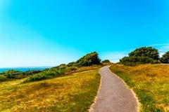 步行胡同在一个城市公园在海边镇,绿色vegetat 免版税库存图片