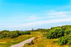 步行胡同在一个城市公园在海边镇,绿色vegetat 库存照片