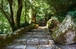 步行路线到贝纳宫殿  辛特拉 葡萄牙 免版税库存照片