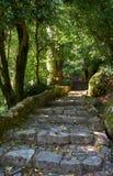 步行路线到贝纳宫殿  辛特拉 葡萄牙 免版税库存图片