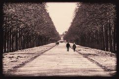 步行通过冬天庭院 免版税库存图片