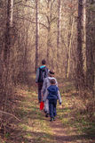 步行通过森林的孩子 库存图片