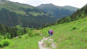 步行通过Krummbachtal谷的人们在提洛尔奥地利 股票录像