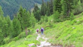 步行通过Krummbachtal谷的人们在提洛尔奥地利 影视素材