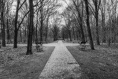 步行通过Steppengarten在柏林 库存图片