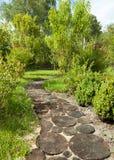 步行道路在用木树桩装饰的庭院里 免版税库存图片