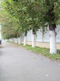 步行道 免版税库存图片