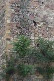 武器的漏洞在堡垒塔 库存图片