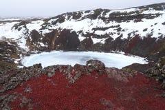 武尔卡诺岛石头 库存图片