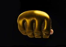 武术的金手套奖, Muttahida Majlis-E-Amal 文本的空间 徽标 免版税库存照片
